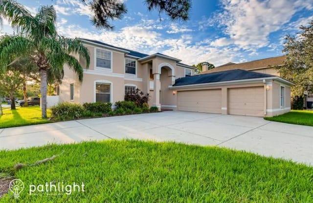 15506 Kingsmill Place - 15506 Kingsmill Place, Keystone, FL 33556