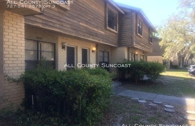 12097 117th St N - 12097 117th St, Pinellas County, FL 33778