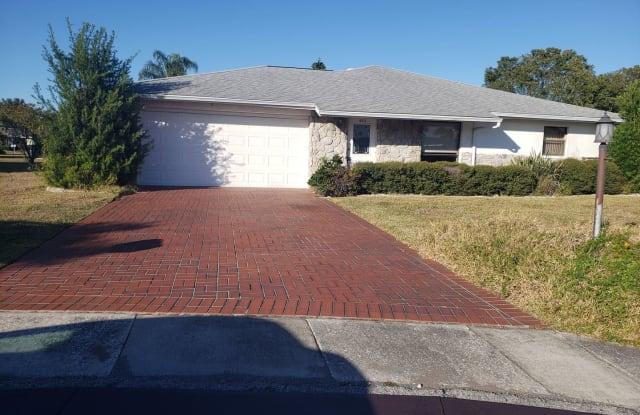 1803 Pineapple Palm Ct - 1803 Pineapple Palm Ct, Sun City Center, FL 33573