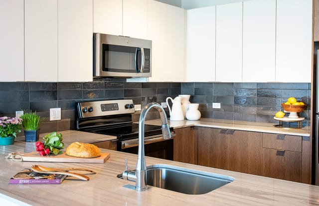 Aspire Residences Chicago Il Apartments For Rent