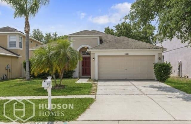 11431 Village Brook Drive - 11431 Village Brook Drive, Riverview, FL 33579