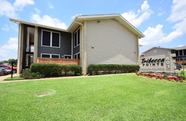 Tribecca Pointe Apartments - 601 Brown Trail, Hurst, TX 76053