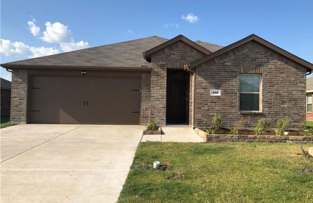 403 Shiplap Lane - 403 Shiplap Lane, Collin County, TX 75189