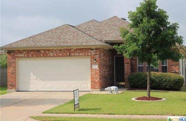 121 Almquist Street - 121 Almquist Street, Hutto, TX 78634