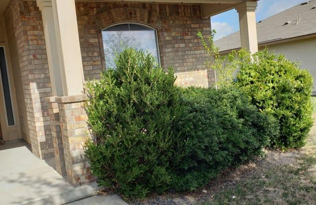 406 Creston St - 406 Creston Street, Hutto, TX 78634