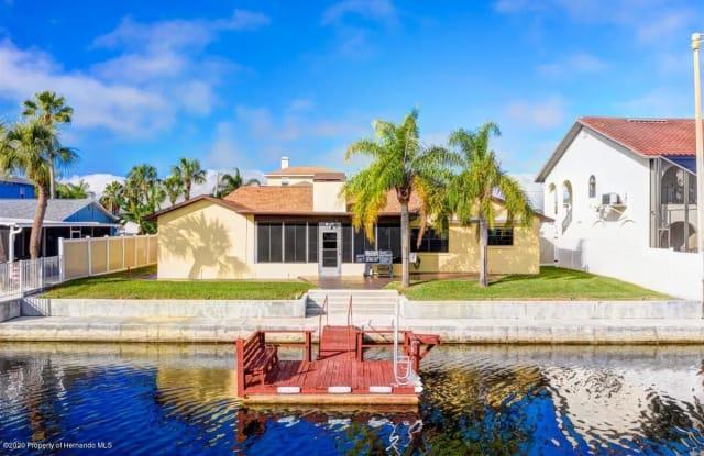 4136 Camelia Drive - 4136 Camelia Drive, Hernando Beach, FL 34607