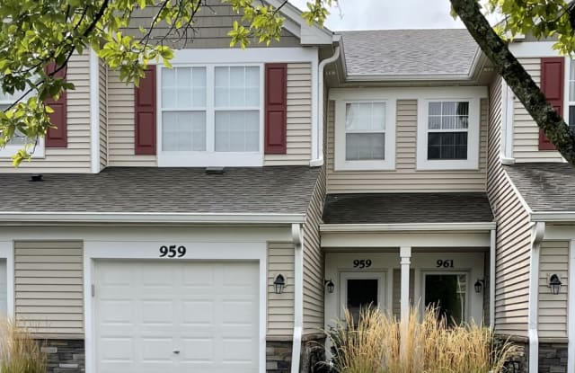 959 Genesee Drive - 959 Genesee Drive, Naperville, IL 60563
