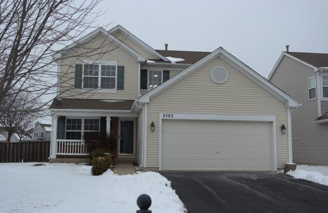 2503 Red Hawk Ridge Court - 2503 Red Hawk Ridge Drive, Aurora, IL 60503