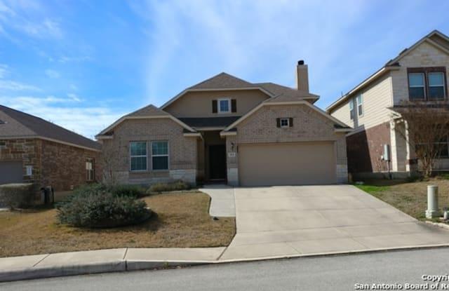 113 CHISHOLM DR - 113 Chisholm Drive, Boerne, TX 78006
