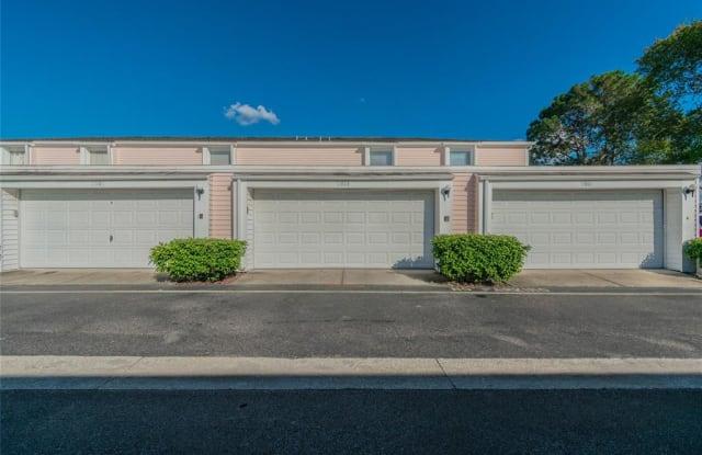 11905 CYPRESS VISTA - 11905 Cypress Vista, Westchase, FL 33626