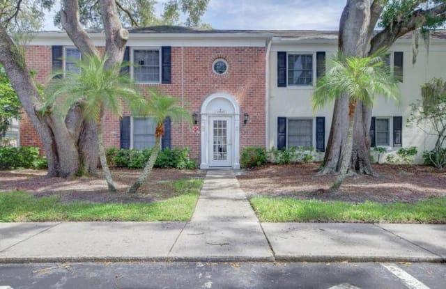 13835 Orange Sunset Drive - 13835 Orange Sunset Drive, Lake Magdalene, FL 33618