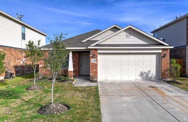 20134 Linden Spruce Lane - 20134 Linden Spruce Ln, Fort Bend County, TX 77407