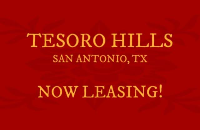 4831 War Horse Drive - 4831 War Horse Dr, San Antonio, TX 78242