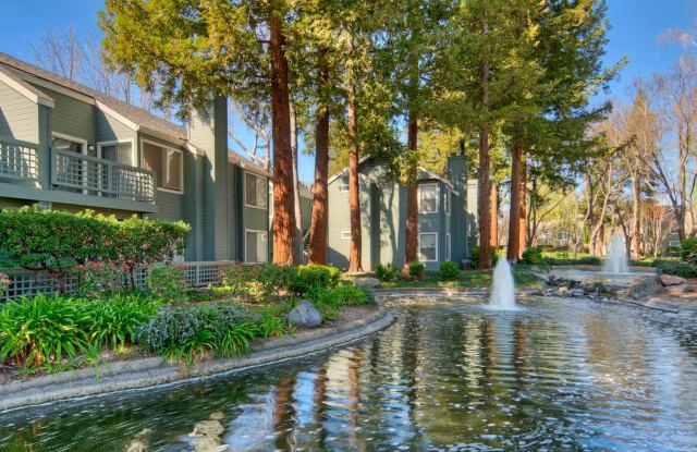 Wood Creek - 637 Stonebridge Way, Pleasant Hill, CA 94523