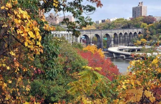 560 Audubon Avenue - 560 Audubon Avenue, New York, NY 10040