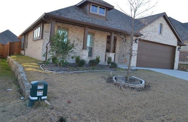 11729 Pistachio Trail - 11729 Pistachio Tr, Tarrant County, TX 76108