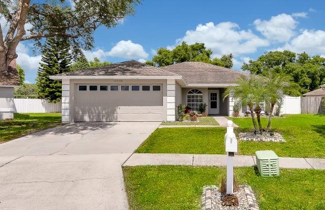 13224 Pine Creek Circle - 13224 Pine Creek Circle, Riverview, FL 33579