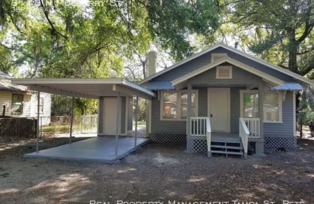 8113 N Mulberry St - 8113 North Mulberry Street, Tampa, FL 33604