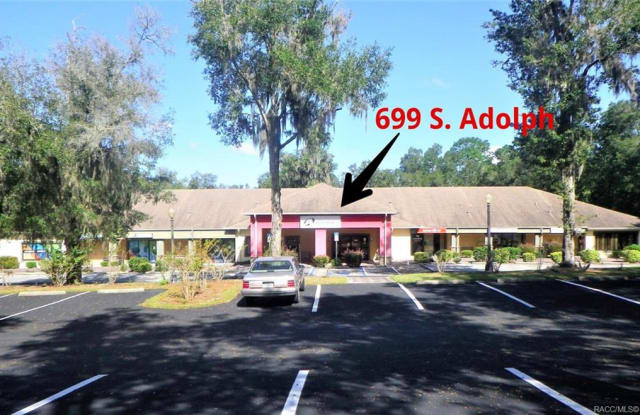 699 S Adolph Point - 699 South Adolph Point, Lecanto, FL 34461