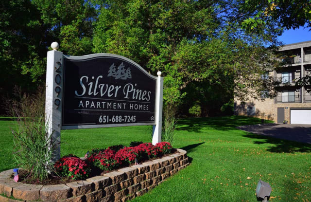 Silver Pines - 2099 Silver Bell Road, Eagan, MN 55122
