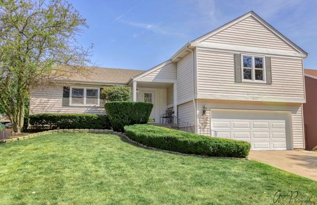 652 BUCKTHORN Terrace - 652 Buckthorn Terrace, Buffalo Grove, IL 60089