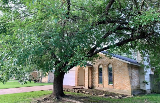 22723 Smokey Hill Drive - 22723 Smokey Hill Drive, Harris County, TX 77450