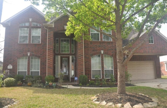 6226 Canyon Chase Drive - 6226 Canyon Chase Dr, Fort Bend County, TX 77469