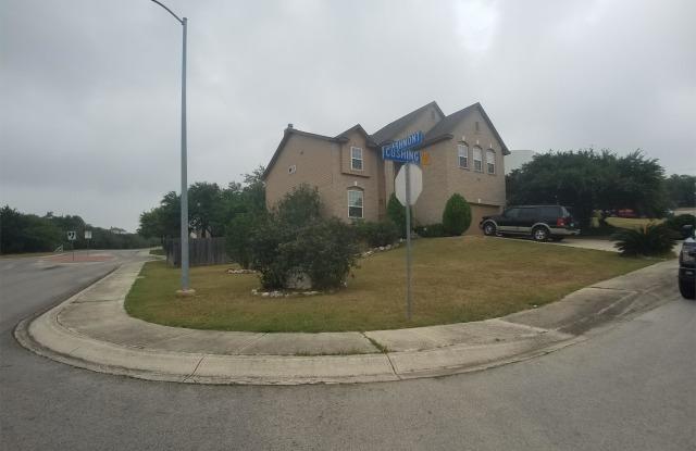 411 Cushing - 411 Cushing, San Antonio, TX 78258