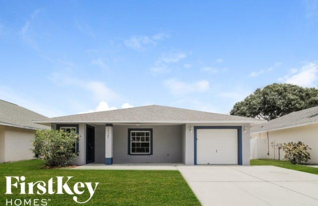 10305 Summerview Circle - 10305 Summerview Circle, Riverview, FL 33578