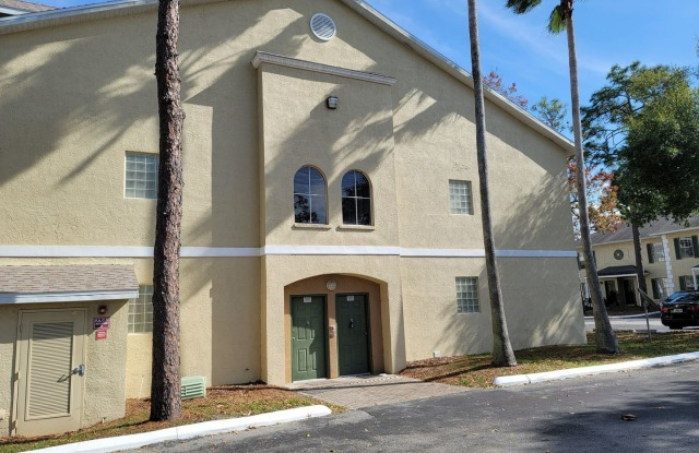 5003 Sunridge Palms - 5003 Sunridge Palms - 5003 Sunridge Palms Drive, Hillsborough County, FL 33617