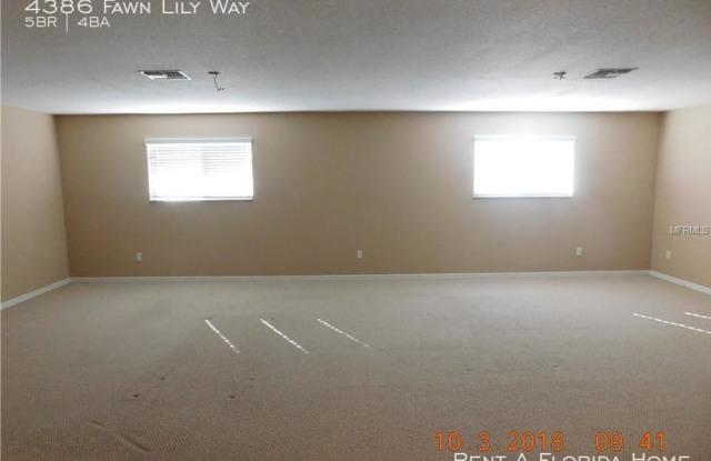 4386 Fawn Lily Way - 4386 Fawn Lily Way, Osceola County, FL 34746