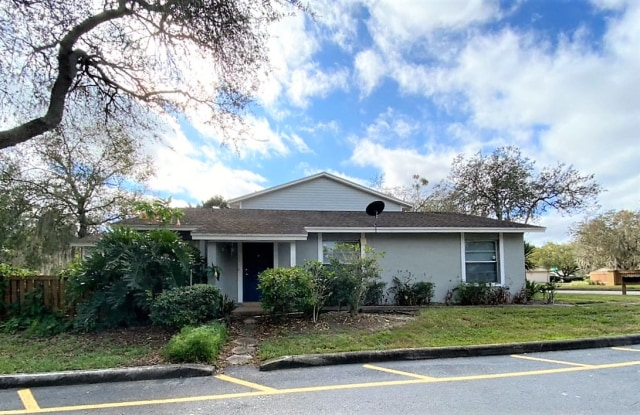 14621 Lake Forest Dr - 14621 Lake Forest Drive, Hillsborough County, FL 33559