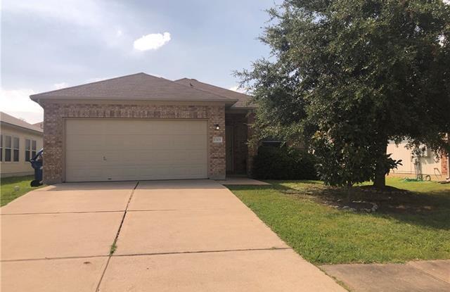 13309 Marie LN - 13309 Marie Lane, Manor, TX 78653