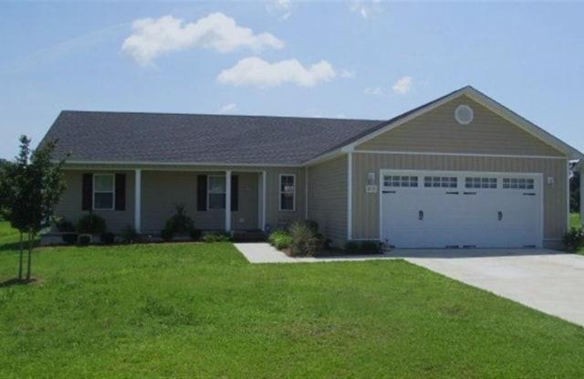 213 Wingspread Lane - 213 Wingspread Lane, Onslow County, NC 28518