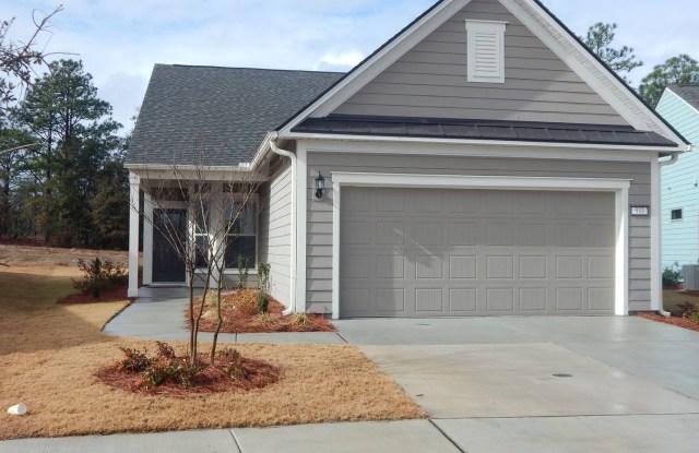 533 Lyrebird Avenue - 533 Lyrebird Avenue, Wilmington, NC 28412
