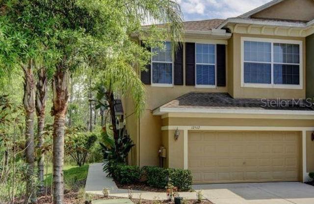 12517 SILVERDALE STREET - 12517 Silverdale Street, Keystone, FL 33626