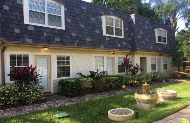 817 Irma Ave - 817 Irma Avenue, Orlando, FL 32803