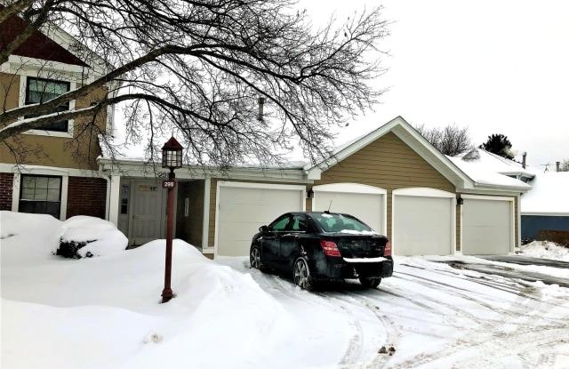 298 Maplewood Court - 298 Maplewood Court, Schaumburg, IL 60193