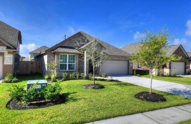 21206 Flowering Dogwood Circle - 21206 Flowering Dogwood Circle, Montgomery County, TX 77365