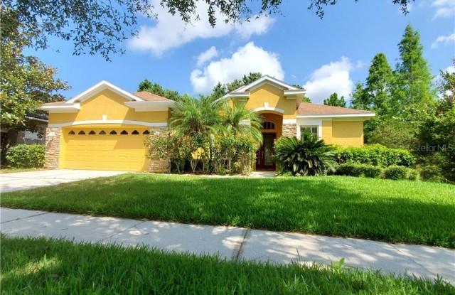 12825 CASTLEMAINE DRIVE - 12825 Castlemaine Drive, Keystone, FL 33626