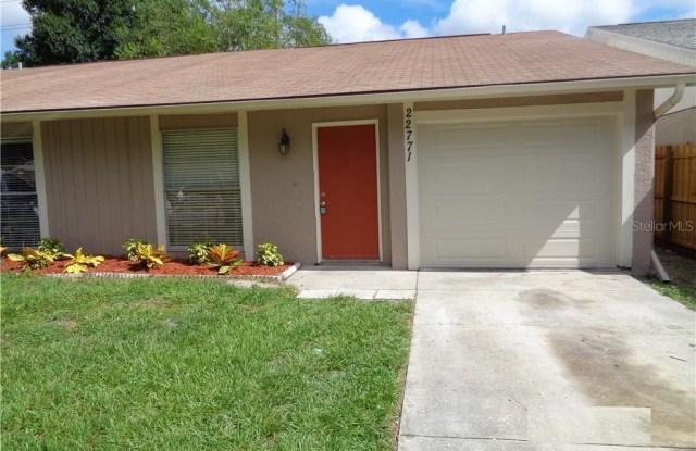 22771 PENNY LOOP - 22771 Penny Loop, Land O' Lakes, FL 34639