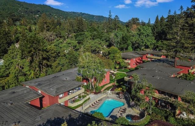 Bay Tree - 347 Massol Ave, Los Gatos, CA 95030