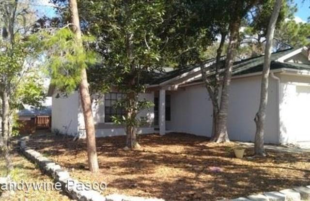 10907 Livingston Dr - 10907 Livingston Drive, River Ridge, FL 34654