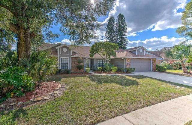 1407 HOLLEMAN DRIVE - 1407 Holleman Drive, Bloomingdale, FL 33596