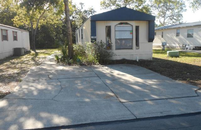 Forest Green Family Community - 14008 Bluegill Lane, Pasco County, FL 34669
