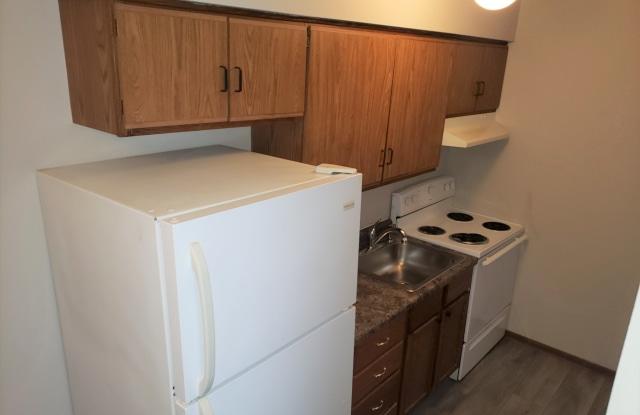 Coralville Apartments - 1001 21st Avenue Place - 1001 21st Avenue Place, Coralville, IA 52241