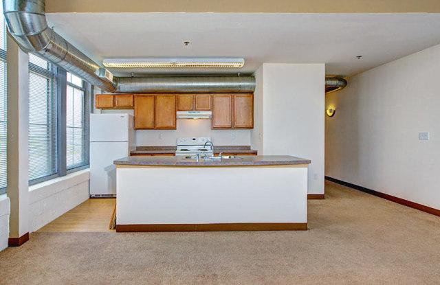 Blue Ribbon Loft Apartments - 901 W Winnebago St, Milwaukee, WI 53205