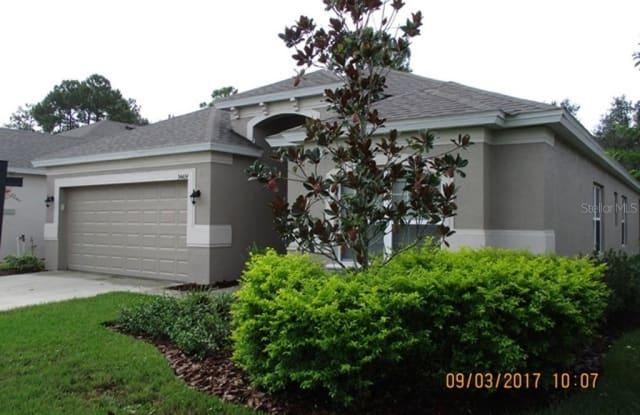 34424 BLUE ASH COURT - 34424 Blue Ash Court, Pasadena Hills, FL 33545