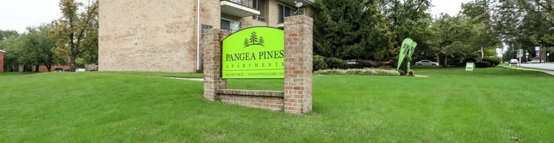 Pangea Pines