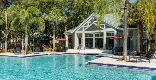100 Best Apartments For Rent In Florida With Pictures